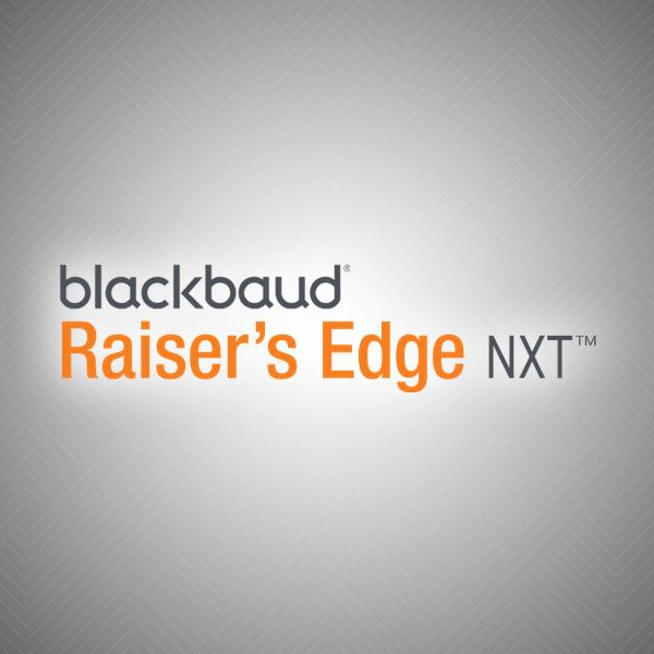 Raiser's Edge™ Consultant